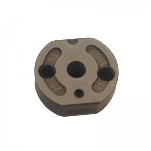 Common Rail Plate Valve
